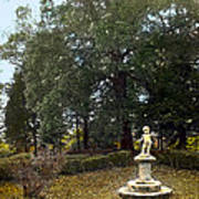 Statue And Tree Poster