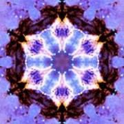 Stellar Spiral Eagle Nebula IIi Poster