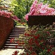 Steps To Azalea Fairyland Poster