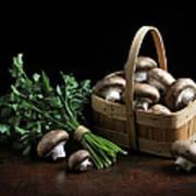 Still Life With Mushrooms Poster