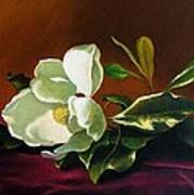 Still Life With White Flower Poster