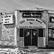 Stone Pony In Black And White Poster