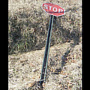 Stop Sign 1 Poster