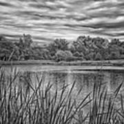 Storm Passing The Pond In Bw Poster