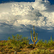 Stormy Desert Skies  Poster
