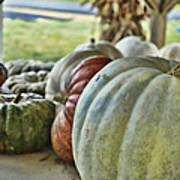Strange Pumpkins Poster