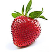 Strawberry On White Background Poster by Elena Elisseeva