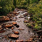 Stream Along Gros Morne Trail In Gros Morne Np-nl Poster
