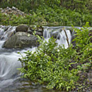 Stream Falls Poster