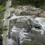 Stream With Waterfall In Vermont Poster