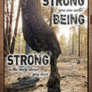 Strong Quote - Photo Art Poster