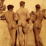 Study Of Three Male Nudes Poster