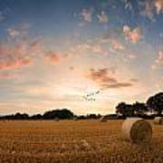 Stunning Summer Landscape Of Hay Bales In Field At Sunset Digital Painting Poster by Matthew Gibson