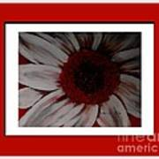 Stylized Daisy With Red Border Poster