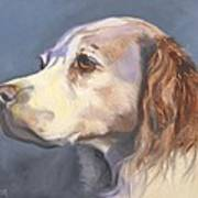 Such A Spaniel Poster