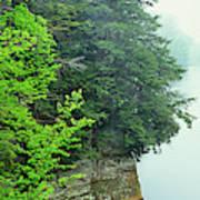 Sugar Creek, Turkey Run State Park Poster