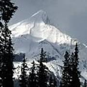 Sugar Icing Mountain Top Poster