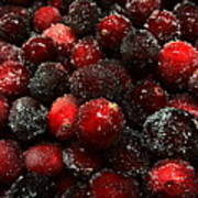 Sugared Cranberries Poster