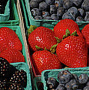Summer Berries Poster