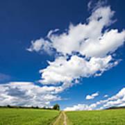 Summer Day Blue Sky Green Grass Poster