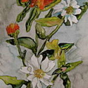 Summer Floral Poster