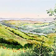 Summer Landscape Inspiration Point Orinda California Poster