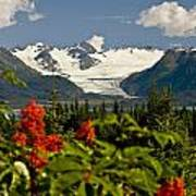 Summer Scenic Of Grewingk Glacier And Poster