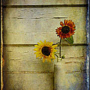 Summer Sunflowers Poster