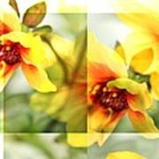 Summer Yellow Two Poster by Cathie Tyler
