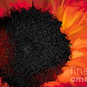 Sun Fire Poster