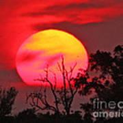 Louisiana Sunset On Fire Poster