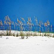 Sun Sand Surf Poster
