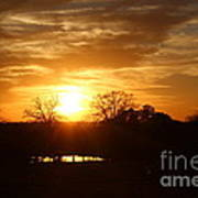 Sun Setting Over The Pond Poster