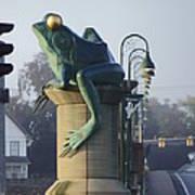 Sunbathing Frog Poster