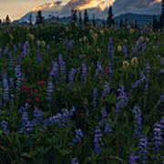 Sunbeams Over Rainier Poster