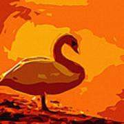 Sundown Swan Poster