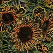 Sunflower 18 Poster