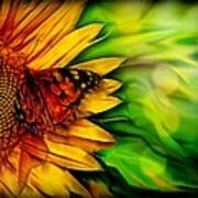 Sunflower And Butterfly Poster