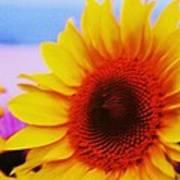 Sunflower At Beach Poster