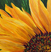 Sunflower From Summer Poster by Mary Jo Zorad
