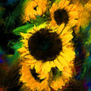 Sunflower In Motion Poster