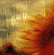 Sunflower In The Rain Poster