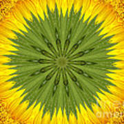 Sunflower Kaleidoscope 3 Poster