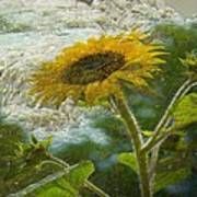 Sunflower Mountain Poster