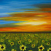 Sunflower Sunset - Flower Art By Sharon Cummings Poster by Sharon Cummings