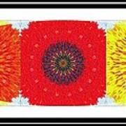 Sunflower Trio - Triptych - Flowers Poster