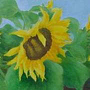 Sunflowers In The Wind Colorful Original Sunflower Art Oil Painting Artist K Joann Russell           Poster