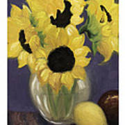 Sunflowers Poster by Nancy Edwards