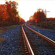 Sunlit Tracks Poster