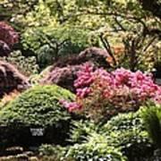 Sunny Japanese Garden Poster